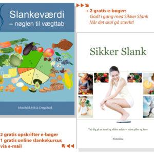 Slank-programmet