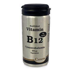 b12 vitamin 500 mcg camette