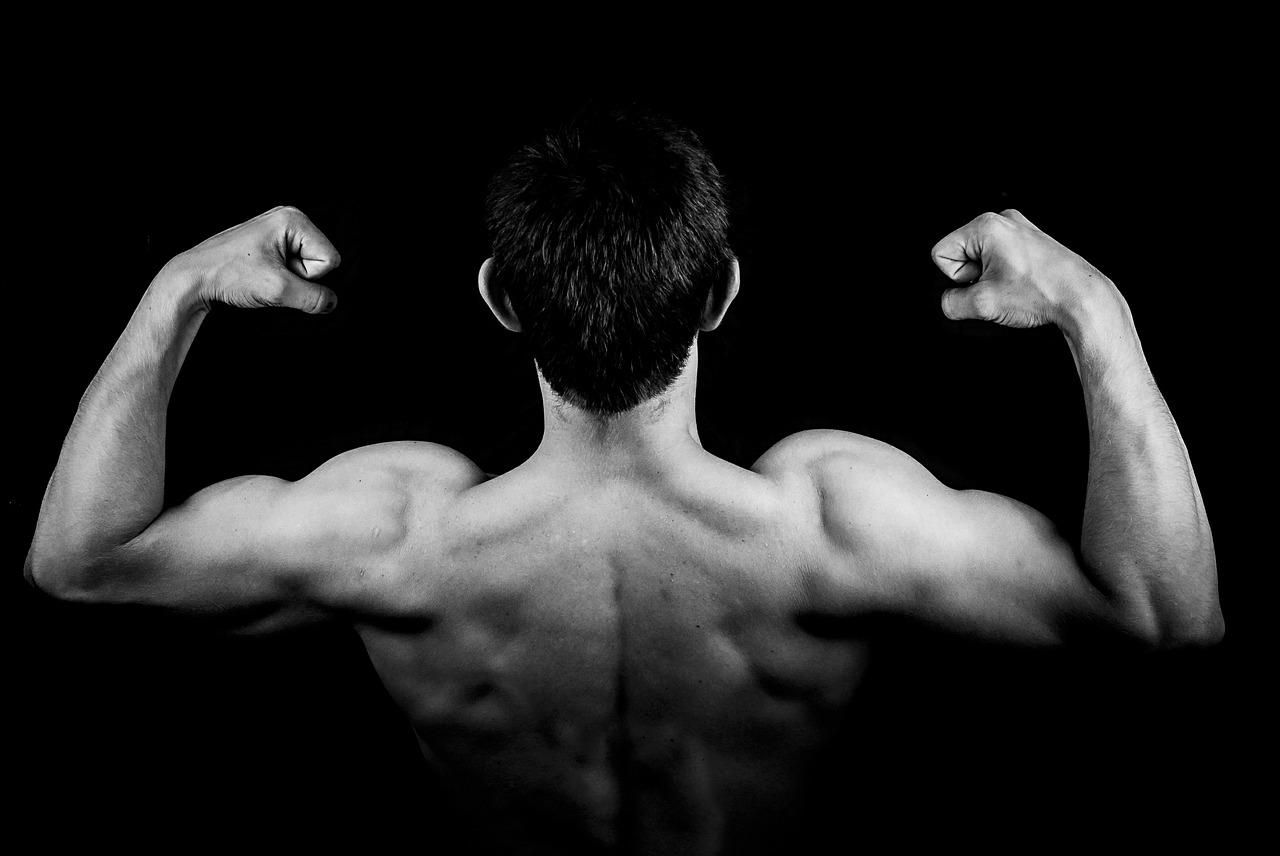 Proteiner til muskelvækst