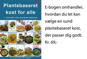 Plantebaseret kost for alle e-bog