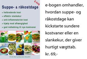 Suppe og råkostdage e-bog